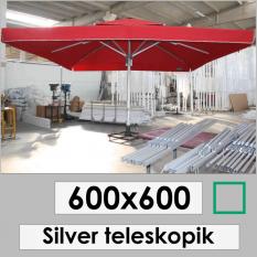 600x600 SILVER TELESKOPIC