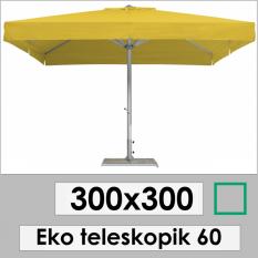 300x300 ECO TELESCOPIC 60